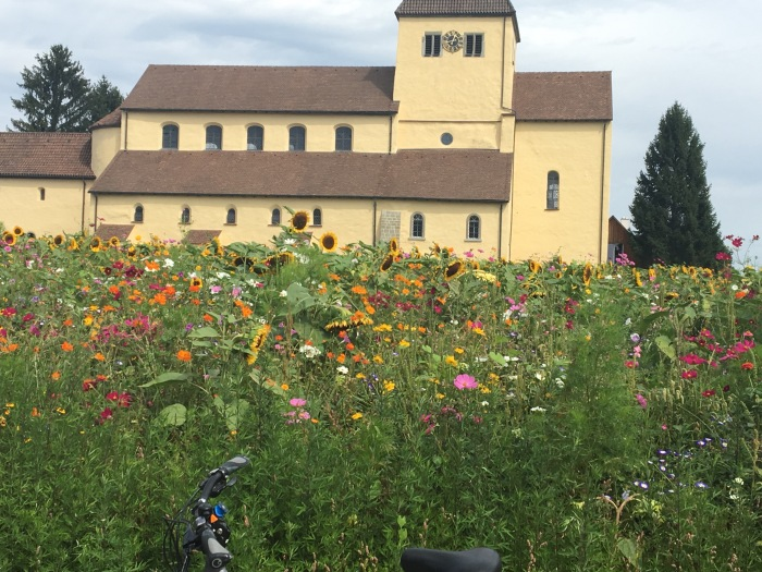 best cycling in Reichenau germany