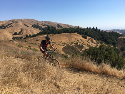mountain biking marin county hills