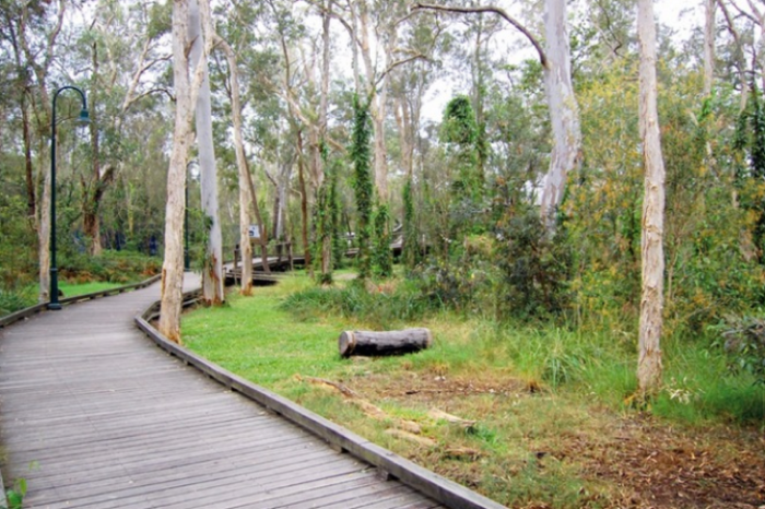 Best Gold Coast rides - Boondall path