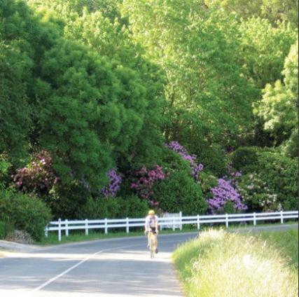 Best rides in Australia - Adelaide Hills