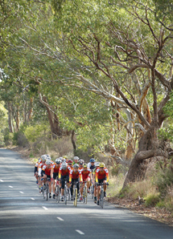 Best bike rides in Adelaide - Barossa Ranges loop