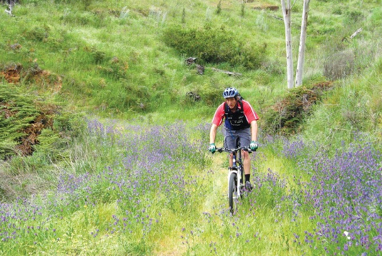 Best bike rides in Adelaide - Cudlee Creek